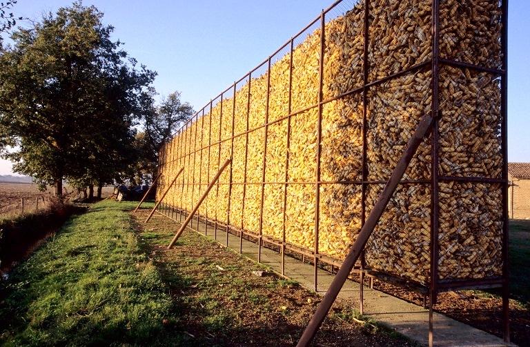 Stockage de maïs grain épi en cribs